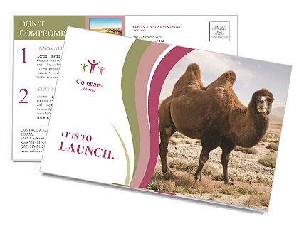 0000090912 Postcard Template