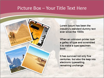 Funny Camel PowerPoint Template - Slide 23