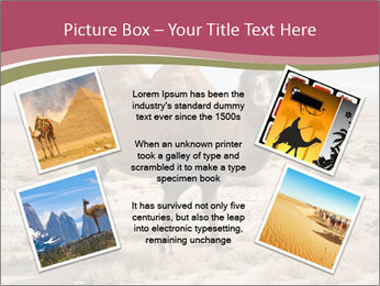 Funny Camel PowerPoint Template - Slide 24