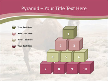 Funny Camel PowerPoint Template - Slide 31
