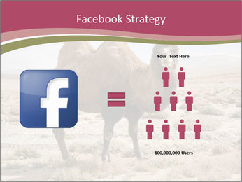Funny Camel PowerPoint Template - Slide 7
