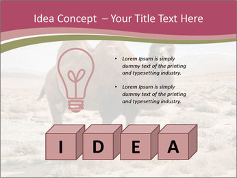 Funny Camel PowerPoint Template - Slide 80