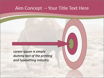 Funny Camel PowerPoint Template - Slide 83