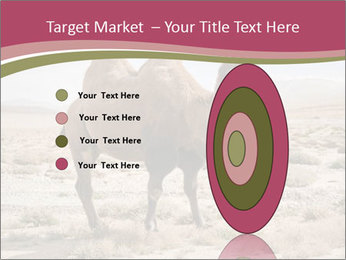 Funny Camel PowerPoint Template - Slide 84