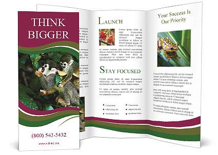 0000090913 Brochure Template