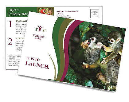 0000090913 Postcard Templates