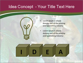 0000090913 PowerPoint Template - Slide 80