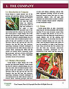 0000090913 Word Templates - Page 3