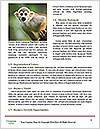 0000090913 Word Templates - Page 4