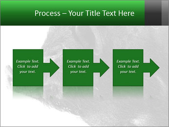 Wild Black Pig PowerPoint Templates - Slide 88