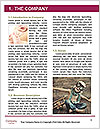 0000090925 Word Template - Page 3
