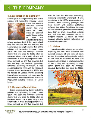 0000090926 Word Template - Page 3