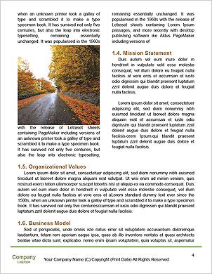 0000090926 Word Template - Page 4