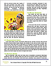 0000090927 Word Template - Page 4