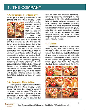 0000090930 Word Template - Page 3