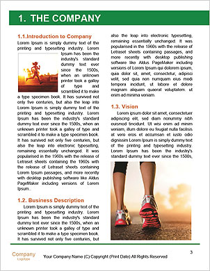 0000090933 Word Template - Page 3