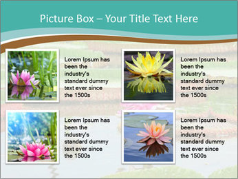 Waterlily PowerPoint Template - Slide 14