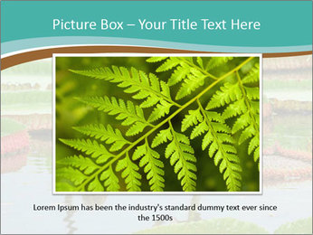 Waterlily PowerPoint Template - Slide 16
