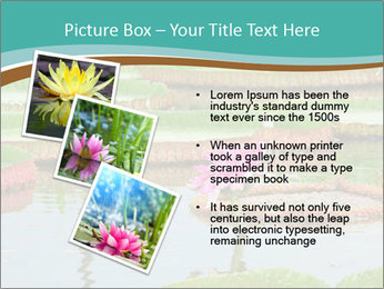 Waterlily PowerPoint Template - Slide 17