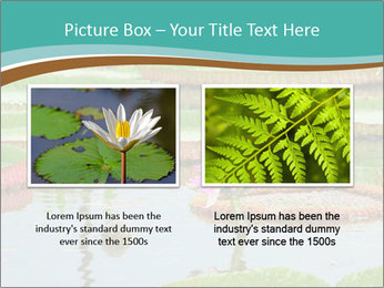 Waterlily PowerPoint Template - Slide 18