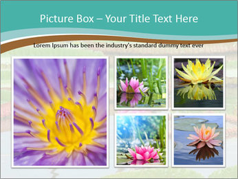 Waterlily PowerPoint Template - Slide 19