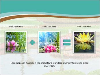 Waterlily PowerPoint Template - Slide 22