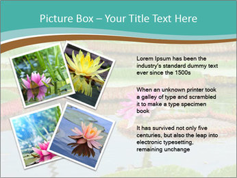 Waterlily PowerPoint Template - Slide 23