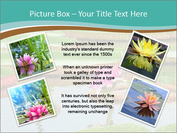 Waterlily PowerPoint Template - Slide 24