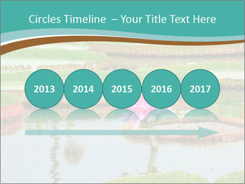 Waterlily PowerPoint Template - Slide 29