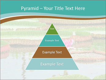 Waterlily PowerPoint Template - Slide 30
