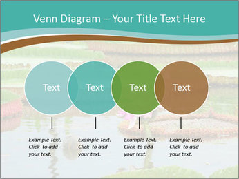 Waterlily PowerPoint Template - Slide 32