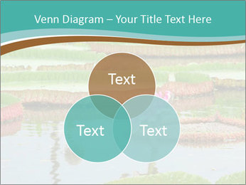 Waterlily PowerPoint Template - Slide 33