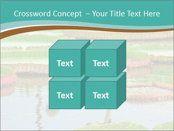 Waterlily PowerPoint Template - Slide 39