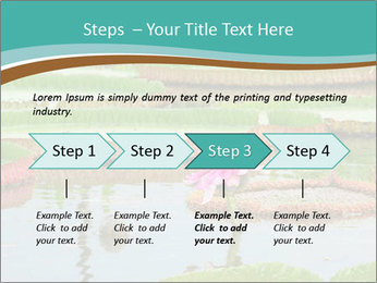 Waterlily PowerPoint Template - Slide 4
