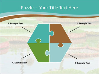 Waterlily PowerPoint Templates - Slide 40