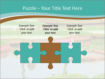 Waterlily PowerPoint Template - Slide 42