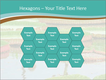 Waterlily PowerPoint Templates - Slide 44