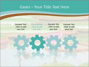 Waterlily PowerPoint Template - Slide 48