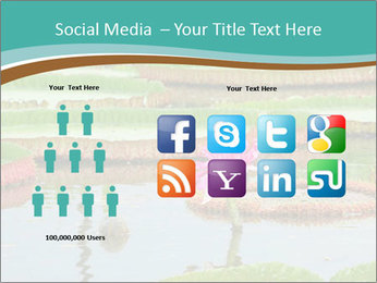 Waterlily PowerPoint Template - Slide 5