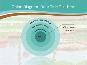 Waterlily PowerPoint Template - Slide 61