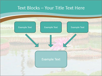 Waterlily PowerPoint Templates - Slide 70