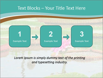 Waterlily PowerPoint Template - Slide 71