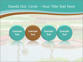 Waterlily PowerPoint Template - Slide 76