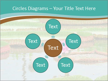 Waterlily PowerPoint Templates - Slide 78