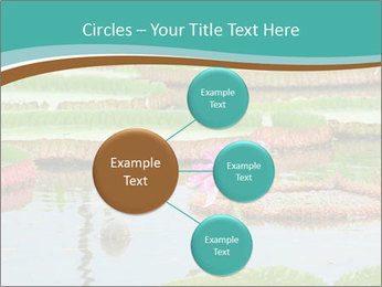 Waterlily PowerPoint Template - Slide 79