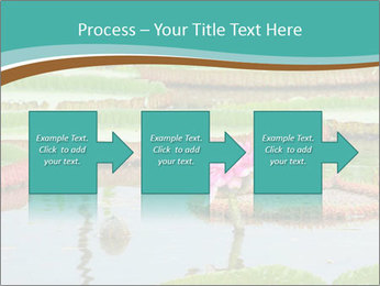 Waterlily PowerPoint Templates - Slide 88