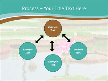 Waterlily PowerPoint Template - Slide 91
