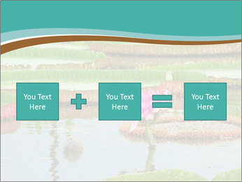 Waterlily PowerPoint Template - Slide 95