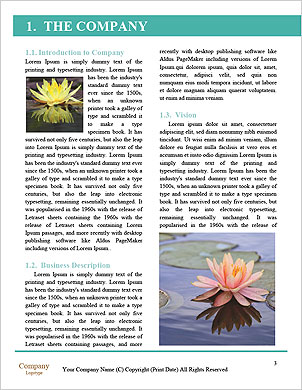 0000090945 Word Template - Page 3