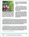 0000090945 Word Template - Page 4